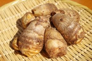 サトイモ/秋野菜の種類や特徴について|役立ち情報ナビ