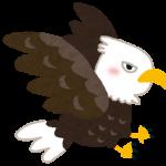鷲/日本の珍名字、天気・動物にまつわる珍名|役立ち情報ナビ