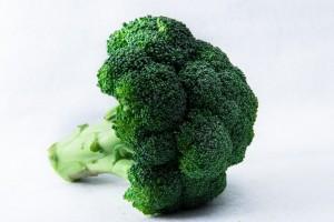 ブロッコリー/秋野菜の種類や特徴について