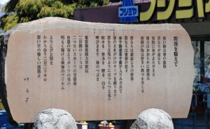 箱根駅伝山の神