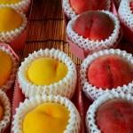 黄桃と白桃の違い|役立ち情報ナビ